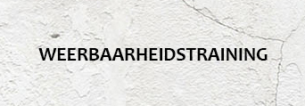 WEERBAARHEIDSTRAINING